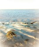 Isola abbandonata Immagini Stock