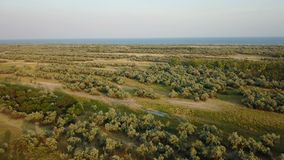 Isola Biryuchiy della fauna selvatica Rilevamento aereo archivi video