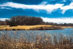 Isola con gli alberi e le gobbe fotografia stock libera da diritti