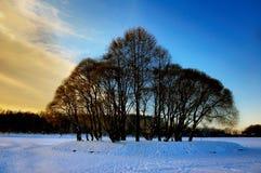Isola con gli alberi in mezzo ad un lago congelato Immagine Stock