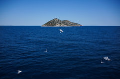 Isola con i gabbiani vicino a Thassos, Grecia Immagine Stock