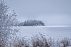 Isola congelata Fotografie Stock Libere da Diritti