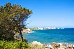 Isola dei Gabbiani海,帛琉撒丁岛意大利 免版税库存图片