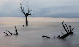 Isola dei tori Fotografia Stock Libera da Diritti