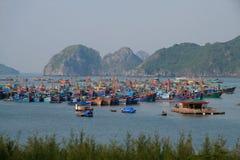Isola del Ba del gatto nella baia di Halong fotografia stock