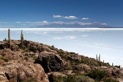Isola del cactus, Salar de Uyuni Immagini Stock Libere da Diritti