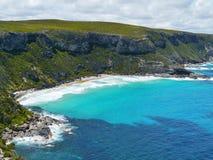 Isola del canguro in Australia Fotografia Stock