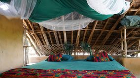 isola del chumbe, Zanzibar fotografie stock libere da diritti