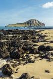 Isola del coniglio Immagine Stock