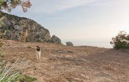 Isola del ¡ di es Vedrà Fotografia Stock Libera da Diritti
