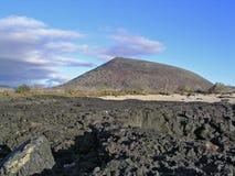 Isola del James, Galapagos Fotografia Stock Libera da Diritti