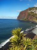 Isola del Madera, paesaggio della costa sud Immagine Stock Libera da Diritti