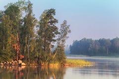 Isola del Nord su un lago con la betulla ed i pini ad una luce di alba immagini stock libere da diritti