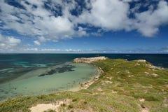 Isola del pinguino Parco marino delle isole di Shoalwater Rockingham Australia occidentale Fotografia Stock Libera da Diritti