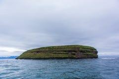 Isola del puffino immagini stock libere da diritti