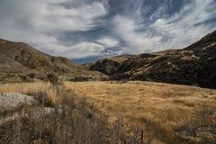 Isola del sud Nuova Zelanda del paesaggio di autunno Fotografia Stock Libera da Diritti