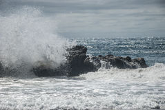 Isola del sud Nuova Zelanda del paesaggio di autunno Fotografia Stock
