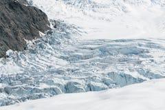 Isola del sud Nuova Zelanda della costa ovest di vista aerea del ghiacciaio di Fox Immagini Stock Libere da Diritti