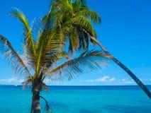 Isola del villaggio di Embudu, Maledives, Oceano Indiano Fotografia Stock