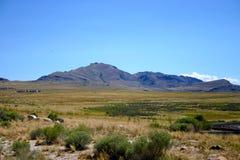 Isola dell'antilope Immagini Stock Libere da Diritti