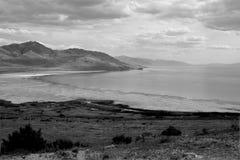 Isola dell'antilope Immagini Stock