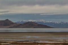 Isola dell'antilope della pittura Immagini Stock Libere da Diritti
