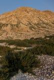 Isola dell'Oman Hallanyiat Immagini Stock Libere da Diritti