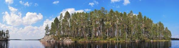 Isola della foresta del pino Fotografia Stock Libera da Diritti