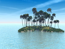 Isola della palma Immagine Stock Libera da Diritti