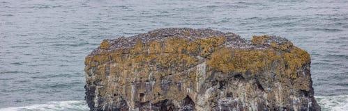 Isola della roccia alla testa di Yaquina Fotografia Stock