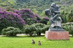 Isola della scimmia di Nanwan Fotografie Stock Libere da Diritti