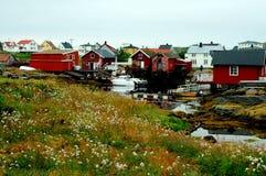 Isola della sula, Norvegia Fotografia Stock