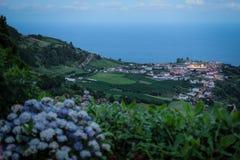 Isola di Açores l'isola verde Immagine Stock