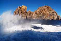 Isola Di Basaluzzo, kiść i morze, pieni się Zdjęcie Royalty Free