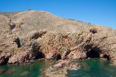 Isola di Berlenga - Portogallo Immagini Stock