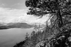 Isola di Bowen Fotografie Stock