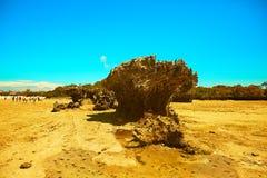 Isola di corallo della roccia contro cielo blu fotografia stock libera da diritti