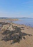 Isola di Cramond, Scozia Immagini Stock