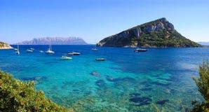 Isola di Figarolo Immagini Stock