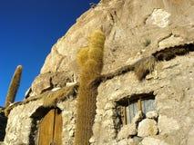 Isola di Incahuasi. Salar de Uyuni. La Bolivia. Immagine Stock Libera da Diritti