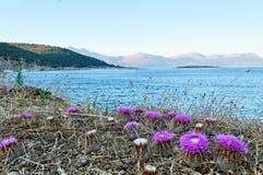 Isola di Kastos Fotografia Stock