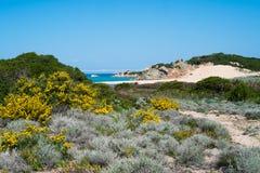 Isola di Maddalena della La, Sardegna, Italia Fotografie Stock