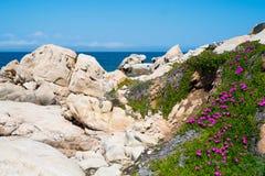 Isola di Maddalena della La, Sardegna, Italia Immagine Stock Libera da Diritti