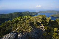 Isola di Mljet - del Croatia Fotografia Stock Libera da Diritti