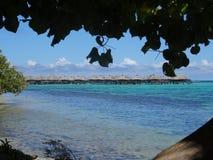 Isola di Moorea Fotografie Stock