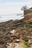 Isola di Mouro Santander Immagine Stock