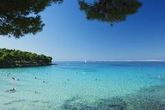 Isola di Murter - del Croatia Immagini Stock