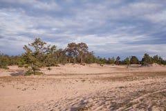 Isola di Olkhon, il lago Baikal fotografia stock
