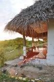 Isola di Pemba, Tanzania Fotografia Stock Libera da Diritti