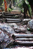 Isola 3 di perseveranza Fotografia Stock Libera da Diritti